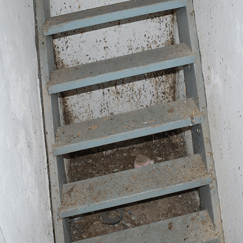 Stairwell Mold