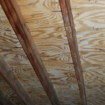 Ceiling Rafters after MoldExterm