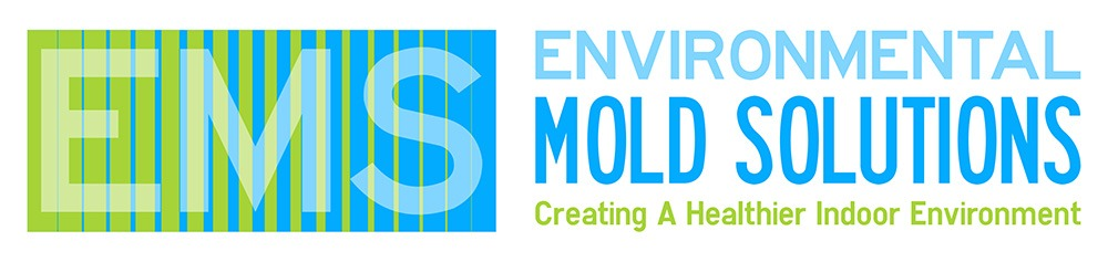 Environmental Mold Solutions